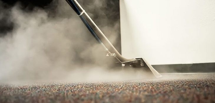 Carpet Wand Scrubbing